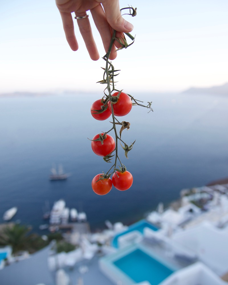 santorini-greece-cherry-tomatoes