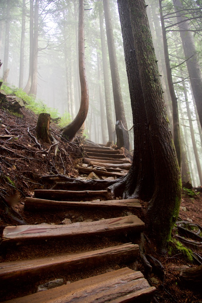 best-hikes-in-vancouver_vancouver-travel-guide