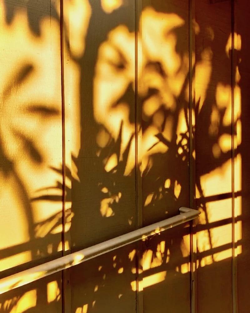 sunset-shadows-maui