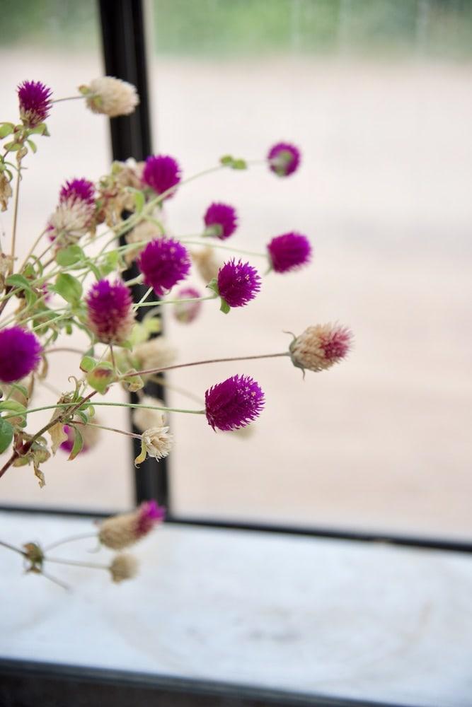santa-fe-greenhouse-blooms