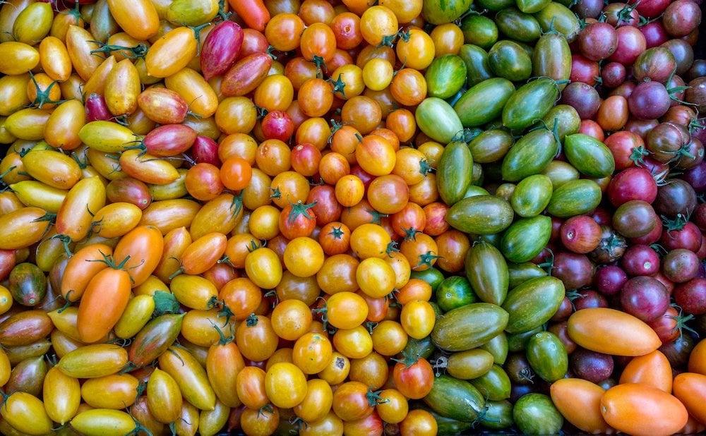 santa-fe-new-mexico-farmers-market