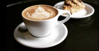 best-coffee-savannah