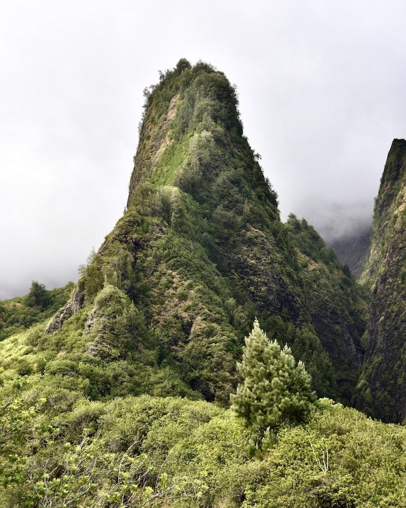 maui-travel-guide