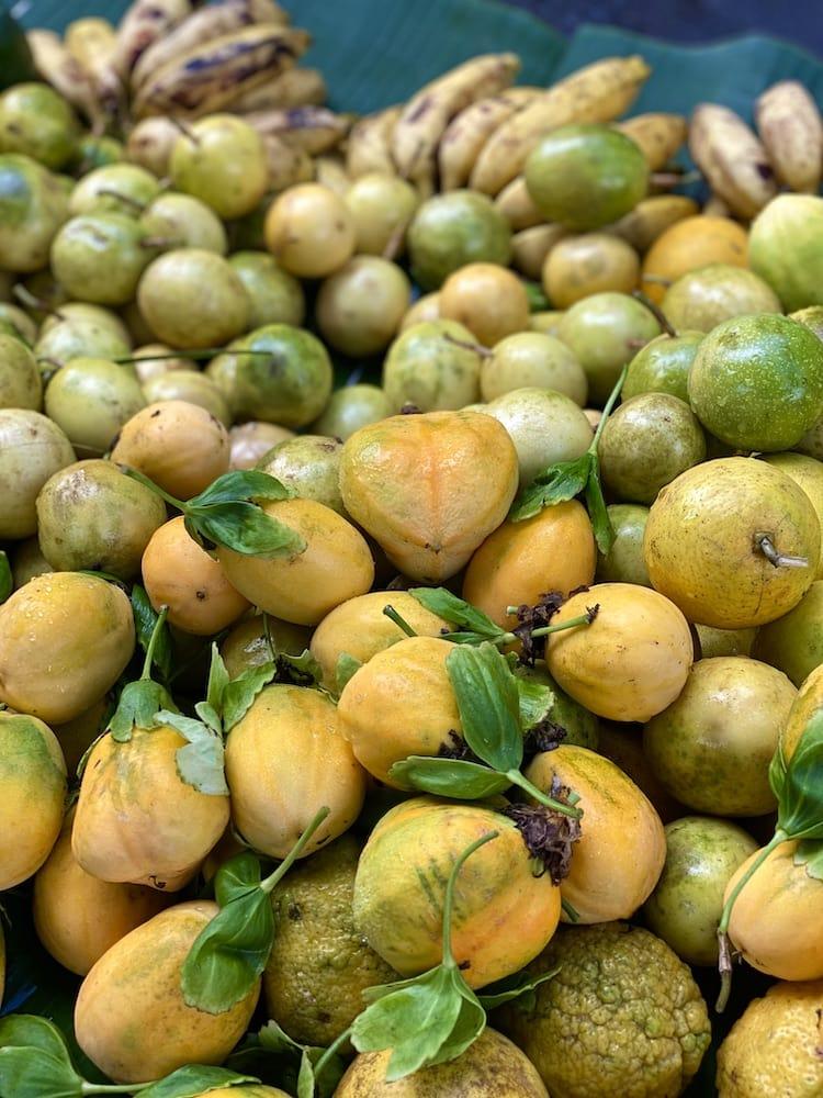 wild-passionfruit-hana-maui